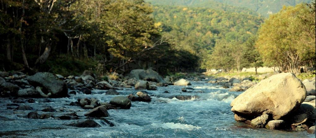 stromende rivier in water